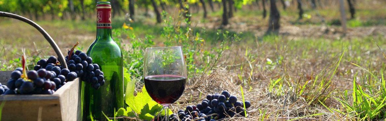 cropped-grk-en-zo-hip-grieks-restaurant-delft-wijn-kaart